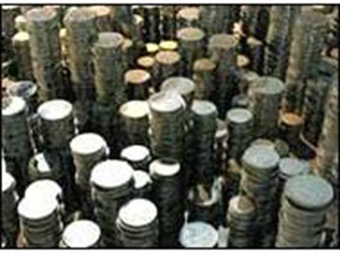 30 yılda 3.5 ton bozuk para biriktirdi